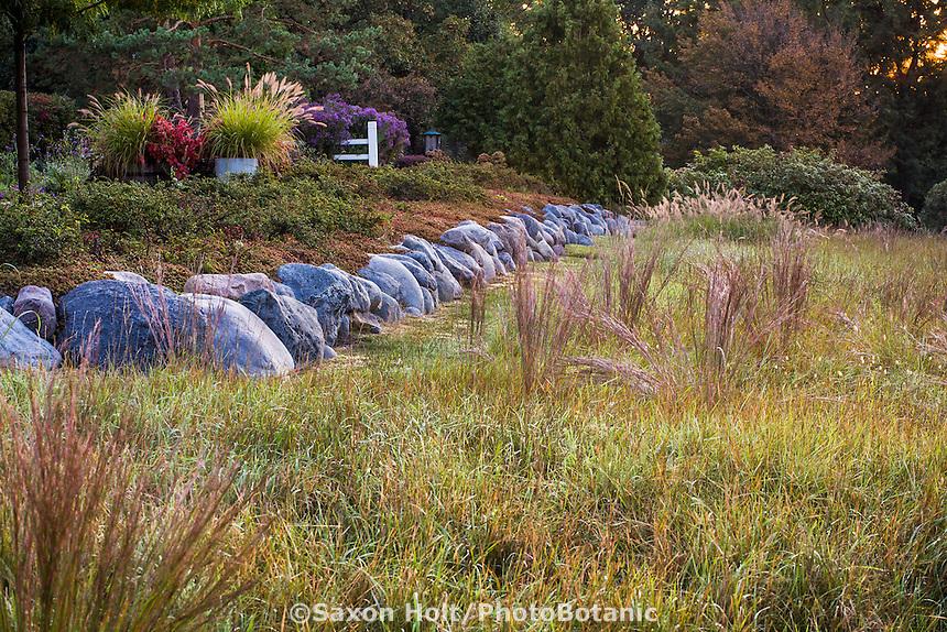 Little Bluestem grass (Schizachyrium scoparium) in reddish fall color in midwest meadow garden with prairie motif