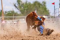 USA , Wyoming, Cheyenne, Barry Kreikemeier, Jackson,WY, at Steer wrestling section  at 2017 Cheyenne Frontyer days