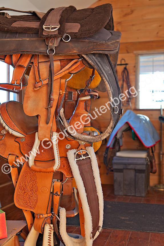 Horse saddles and tack