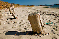 Wooden posts on a sandy beach, Appletree Bay, Tresco, Isles of Scilly, Cornwall, UK.  12/04/08