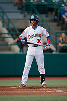 Brooklyn Cyclones Wilmer Reyes (30) at bat during a NY-Penn League game against the Tri-City ValleyCats on August 17, 2019 at MCU Park in Brooklyn, New York.  Brooklyn defeated Tri-City 2-1.  (Mike Janes/Four Seam Images)