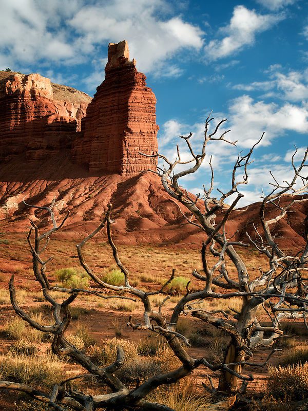 Chimney Rock with dead tree branches  and clouds. Capitol Reef National Park, Utah
