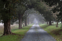 Virginia nature and rural scenes in late summer. Photo/Andrew Shurtleff Photography, LLC
