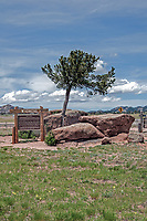 Tree Rock is how the name implies, a tree that appears to be growing out of a rock. It is said to have facinated travelers since the first wagon trains and before. So precious that roads and railroads have since been diverted to preserve it. In the Pole Mountain area, Wyoming, US.