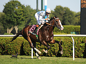 Coureagous Cat gave trainer Hall of Fame trainer Bill Mott his sixth winner of the Hall of Fame Stakes.