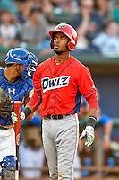 Angel Genao (14) of the Orem Owlz at bat against the Ogden Raptors in Pioneer League action at Lindquist Field on July 29, 2016 in Ogden, Utah. Orem defeated Ogden 8-5. (Stephen Smith/Four Seam Images)