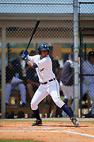 Detroit Tigers Carlos Irigoyen (43) at bat during an Instructional League game against the Philadelphia Phillies on September 19, 2019 at Tigertown in Lakeland, Florida.  (Mike Janes/Four Seam Images)