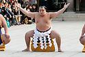 Sumo wrestlers' perform at Meiji Shrine 2018