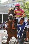 July 27, 2014: Fredericksburg, Luis Saez up, walks in the paddock before the Gr. III Metropolitan Jets Oceanport Stakes at Monmouth Park in Oceanport, NJ.  Fredericksburg, trained by Michael Matz and owned by Ramona Bass, finished 2nd.  ©Joan Fairman Kanes/ESW/CSM