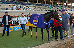 """DEL MAR, CA  AUGUST 28 :#1 Ginobili, wearing his Breeders Cup WAYI cooler after  winning the Pat O'Brien Stakes (Grade ll) Breeders Cup """"Win and You're In"""" Dirt Mile Division on August 28, 2021 at Del Mar Thoroughbred Club in Del Mar, CA.  (Photo by Casey Phillips/Eclipse Sportswire/CSM)"""