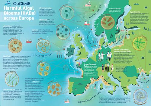 Harmful Algal Blooms (HABs) across Europe