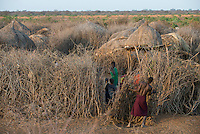 ETHIOPIA, Southern Nations, Lower Omo valley, Kangaten, village Kakuta of Nyangatom tribe, thorn shrub fenced Kral to protect from attacks of hostile tribes and cattle raiders / AETHIOPIEN, Omo Tal, Kangaten, Dorf Kakuta, Nyangatom Hirtenvolk, Bewohner schuetzen ihre Kraals mit Dornenhecken vor feindlichen Staemmen und Viehdiebstaehlen