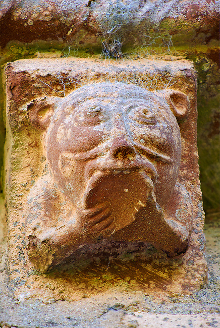 Norman Romanesque exterior corbel no 64 - sculpture of  an animal with a cat like head biting the underside of a bowl. The Norman Romanesque Church of St Mary and St David, Kilpeck Herefordshire, England. Built around 1140