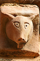 Norman Romanesque exterior corbel no 27 - sculpture of a pigs head. Pigs signify sinners, the unclean and heretics as well as carnal feelings, it is therefore a morality figure. The Norman Romanesque Church of St Mary and St David, Kilpeck Herefordshire, England. Built around 1140