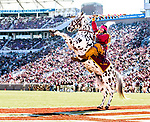 Florida State mascot Osceola atop Renegade celebrate and FSU touchdown against Delaware State in Tallahassee, Fl.  Florida State defeated Delaware State 77-6 in NCAA football.