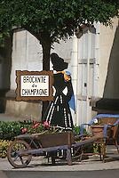 Europe/France/Champagne-Ardenne/51/Marne/Parc Naturel Montagne de Reims/Tauxières Mutry: Enseigne d'une brocante de champagne