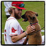 It was Bark in the Park night at the Greenville Drive game last night, and Drive outfielder Cole Brannen found a friend in the dog owned by Drive General Manager Eric Jarinko. (Tom Priddy/Four Seam Images)