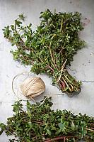 Gastronomie générale / Diététique / Pourpier Bio // General gastronomy / Diet / Organic purslane