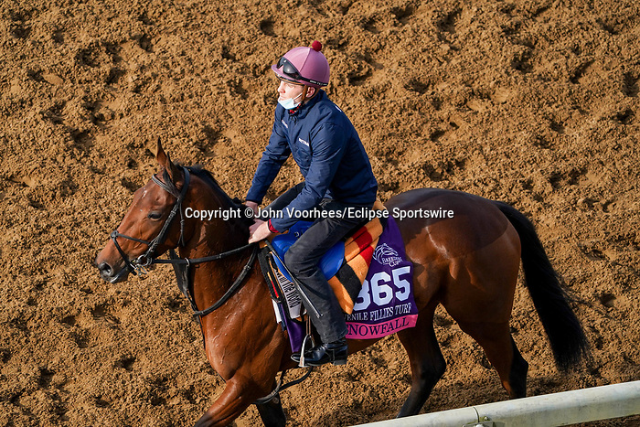 November 5, 2020: Snowfall, trained by trainer Aidan P. O'Brien, exercises in preparation for the Breeders' Cup Juvenile Fillies Turf at Keeneland Racetrack in Lexington, Kentucky on November 5, 2020. John Voorhees/Eclipse Sportswire/Breeders Cup/CSM