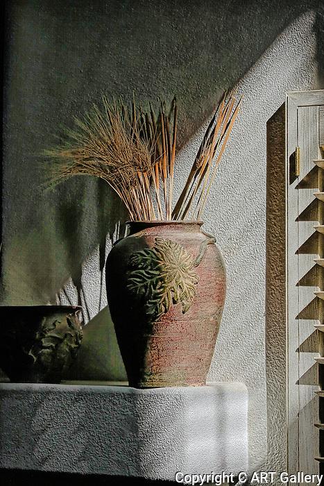 Vase in the sun.