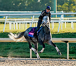01-20-21 Pegasus World Cup Preparations