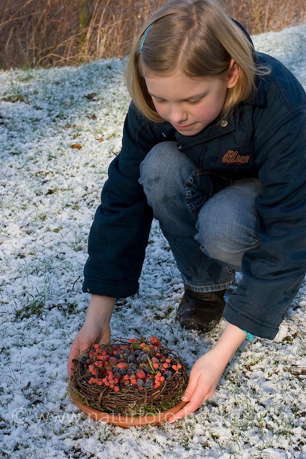 Vogelfutter, im Herbst gesammelte und eingefrorene Wildfrüchte - Vogelbeeren, Schlehen, Hagebutten - werden in Schale im winterlichen Garten als natürliches Vogelfutter angeboten, Vogel-Futter