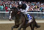 June 6, 2015: Japan with Junior Alvarado up win the Winstar Farm Easy Goer Stakes at Belmont Park in Elmont, York. Zoe Metz/ESW/CSM