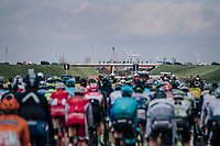peloton using the highway<br /> <br /> 106th Scheldeprijs 2018 (1.HC)<br /> 1 Day Race: Terneuzen (NED) - Schoten (BEL)(200km)