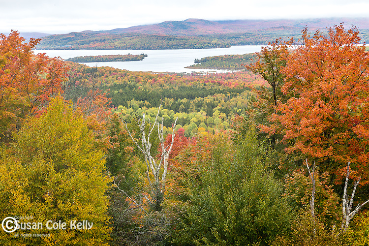 A rainy day in the Rangeley Lakes, Rangeley, Maine, USA