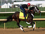 April 21, 2014 Ride On Curlin gallops at Churchill Downs with rider Bryan K. Beccia for trainer William G. Gowan. He is owned by Daniel J. Dougherty.