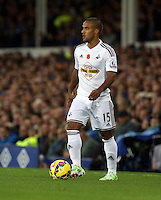Liverpool, UK. Saturday 01 November 2014<br /> Pictured: Wayne Routledge of Swansea<br /> Re: Premier League Everton v Swansea City FC at Goodison Park, Liverpool, Merseyside, UK.