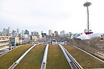 Seattle Skyline and Green Rooftop