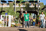 SEP 3,2014:Iron Fist appears at the padock in the Del Mar Futurity Stakes at Del Mar in Del Mar,CA. Kazushi Ishida/ESW/CSM