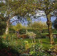 The leafy canopy of a pair of mature trees offers shade in this corner of the garden