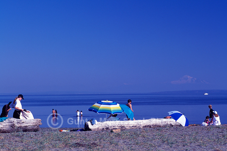 Summer Recreational Activities along Pacific Ocean, Boundary Bay Regional Park, Delta, BC, British Columbia, Canada - People sunbathing on Sandy Beach - Mount Baker, Washington, USA on Horizon
