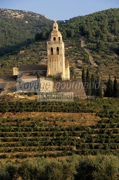 Europe/Croatie/Dalmatie/ Ile de Vis/ Komiza: Eglise Saint-Nicolas et le vignoble