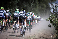 Peloton conquering the gravel (and dust)<br /> <br /> Antwerp Port Epic 2019 <br /> One Day Race: Antwerp > Antwerp 187km<br /> <br /> ©kramon