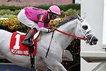 July 05, 2014:  Mr. Baker (FL) with jockey Edgard Zayas on board wins the Housebuster Stakes at Gulfstream Park in Hallandale Beach FL. Grande Shores with jockey Abdiel Jaen on board places. Liz Lamont/ESW/CSM
