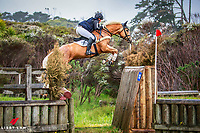 NZL-Donna Edwards-Smith rides Mr Hokey Pokey during the Honda New Zealand CCI3* Cross Country (Interim-4TH). 2016 NZL-Puhinui International 3 Day Event. Puhinui Reserve, Auckland. Saturday 10 December. Copyright Photo: Libby Law Photography