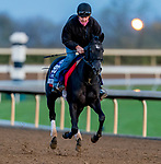 November 1, 2020: Dirty Dangle, trained by trainer Mark E. Casse, exercises in preparation for the Breeders' Cup Juvenile Turf Sprint at Keeneland Racetrack in Lexington, Kentucky on November 1, 2020. Scott Serio/Eclipse Sportswire/Breeders Cup /CSM