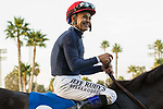 CYPRESS, CA  DECEMBER 3: Smiling Mike Smith and Majestic Heat, head into the winners circle after winning the Bayakoa Stakes (Grade ll) on December 3, 2017, at Los Alamitos Race Course in Cypress, CA. (Photo by Casey Phillips/ Eclipse Sportswire/ Getty Images)