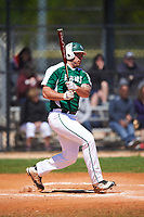 Farmingdale State Rams Dalton McCarthy (15) at bat during the first game of a doubleheader against the FDU-Florham Devils on March 15, 2017 at Lake Myrtle Park in Auburndale, Florida.  Farmingdale defeated FDU-Florham 6-3.  (Mike Janes/Four Seam Images)