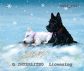 GIORDANO, CHRISTMAS ANIMALS, WEIHNACHTEN TIERE, NAVIDAD ANIMALES, paintings+++++,USGI2667,#XA# dogs,puppies