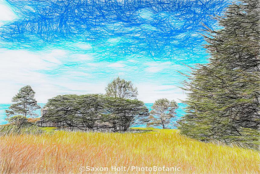Sketch (photosketch) - Condominium One at The Sea Ranch