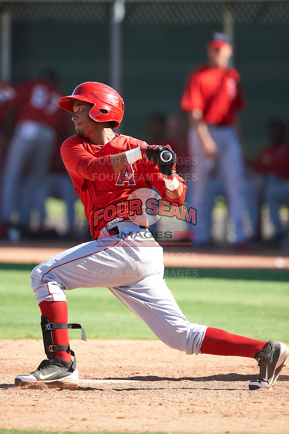 Los Angeles Angels minor league infielder Jose Rondon #7 during an instructional league game against the Arizona Diamondbacks at the Tempe Diablo Minor League Complex on October 1, 2012 in Tempe, Arizona.  (Mike Janes/Four Seam Images)