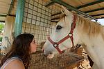 Galilee-Horse riding in Kfar Szold