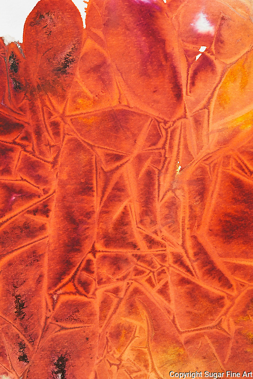orange, abstract, intense, frontal, vivid, yellow, fiery, direct, intense, decor