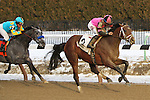 February 7, 2015: Far From Over with Manuel Franco wins the 135th running of the Grade III Withers Stakes for 3-year olds, going 1 1/16 mile at Aqueduct Racetrack. Trainer: Todd Pletcher. Owner: Black Rock Thoroughbreds, LLC. Sue Kawczynski/ESW/CSM