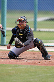 March 29, 2010:  Catcher Matt Liuzza of the Toronto Blue Jays organization during Spring Training at the Englebert Minor League Complex in Dunedin, FL.  Photo By Mike Janes/Four Seam Images