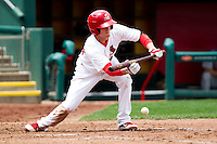 Ryan Jackson (23) of the Springfield Cardinals lays down a bunt during a game against the Arkansas Travelers on May 10, 2011 at Hammons Field in Springfield, Missouri.  Photo By David Welker/Four Seam Images.